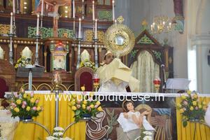 Welcome New Year with Adoration at Milagres Cathedral